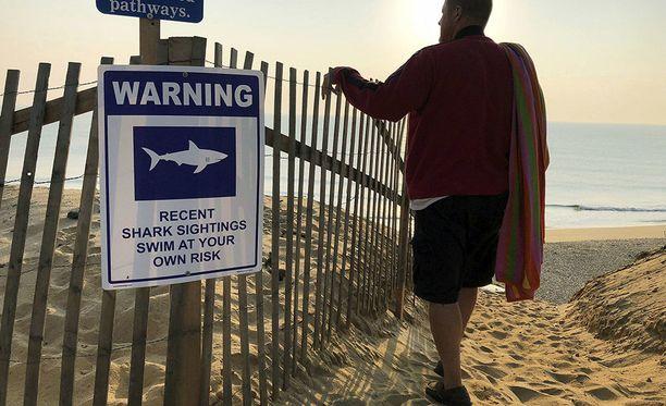 Cape Codin uimarannoilla varoitetaan haivaarasta, sillä haihavaintojen määrä on lisääntynyt kasvaneen harmaahyljekannan vuoksi.