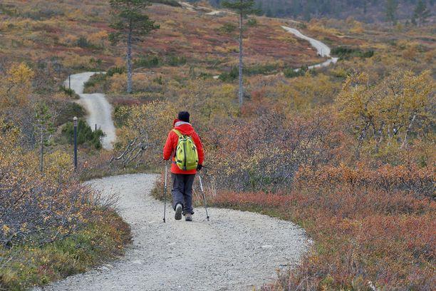 Marinin (sd) hallitus haluaa tuoreella päätöksellä auttaa ahdingossa olevaa matkailualaa. Kuvassa retkeilijä Urho Kekkosen kansallispuistossa Kiilopäällä.