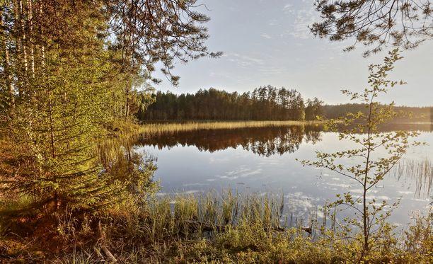 Brittikirjailija Joel Willansin mukaan juhannuksena voi olla suomalainen sisu koetuksella.