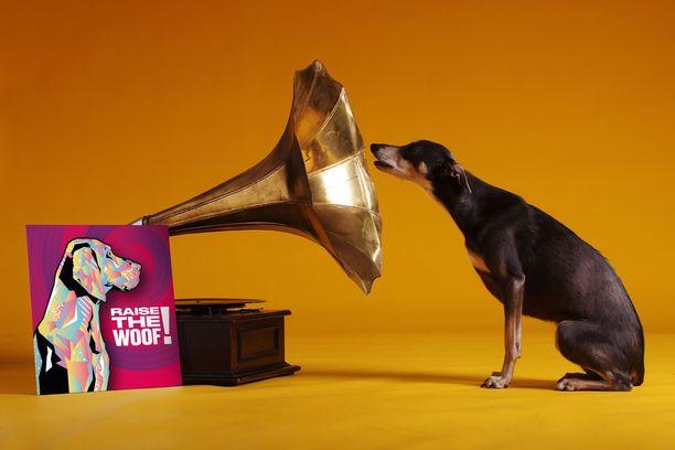 Raise the Woof! -kappaleen on kerrottu olevan ensimmäinen koirien joululaulu.