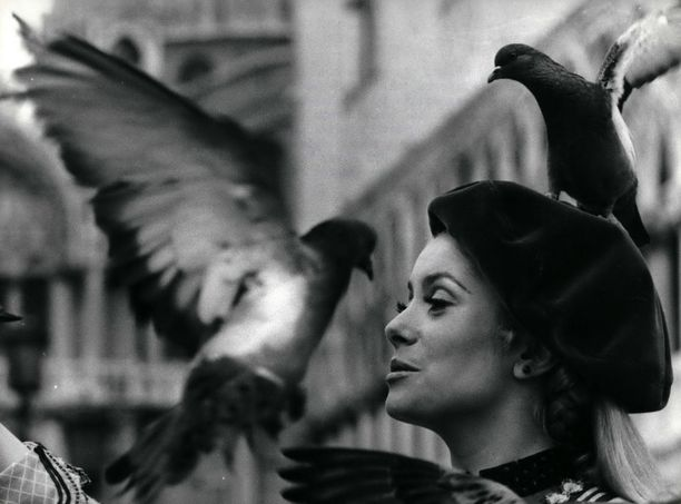 Yksi malliesimerkki elegantista ranskattaresta: Catherine Deneuve.