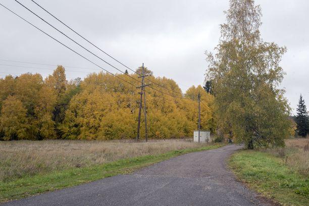 Poliisi etsi Piia Ristikankaretta keväällä maastosta. Alue ei ole lähellä Ristikankareen kotitaloa. Kuvassa näkyvä tie kulkee Ristikankareen kotitalon läheltä Pontelan nuorisotalolle.