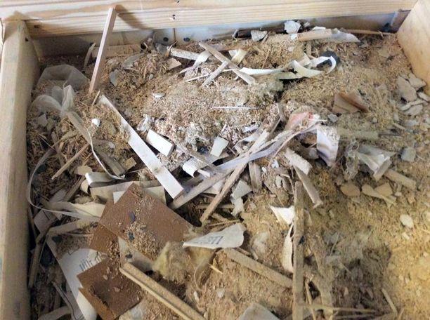 Sokkelista löytynyt rakennusjäte oli onneksi kuivaa.