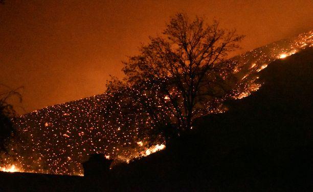 Perjantaina otettu kuva Oak Parkista, Thousand Oaksin alueelta Kaliforniasta. Maasto palaa suurelta alueelta, eivätkä sammutustyöt estä liekkien leviämistä kuin osin.