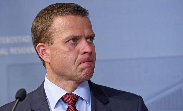 Kokoomuksen puheenjohtaja Petteri Orpo voi olla tyytyväinen, sillä hänen puolueensa suosio jatkaa kasvuaan.