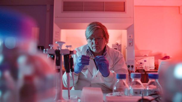Jari Louhelainen löytää mahdollisuuden uuteen tutkinnalliseen linjaan tutkiessaan tyynylinnan mahdollista omistajaa.