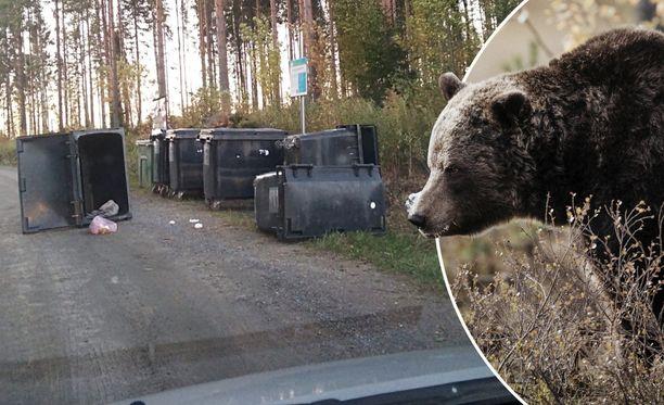 Iltalehden lukija lähetti varhain aamulla otetun kuvan karhun roskien tonkimisen jäljistä Kuhmoisissa.