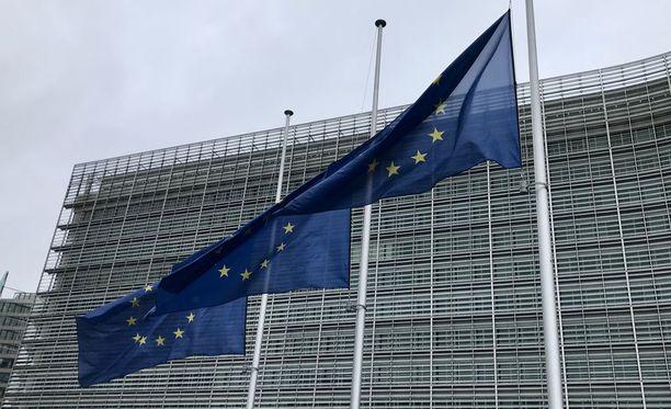 Euroopan sosiaalisten oikeuksien komitean uusimman maaraportin mukaan Suomen valtio ei noudata peruskirjassa turvattuja sosiaalisia oikeuksia kaikkien artikloiden osalta.