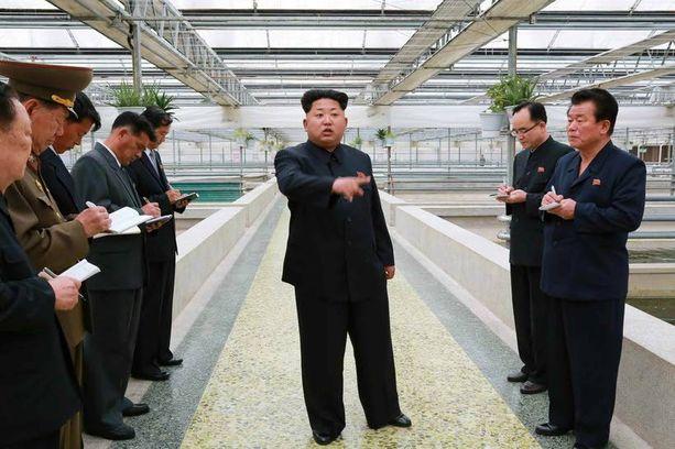 Pohjois-Korean johtajan Kim Jong-unin uho ei ota laantuakseen. Hän tuntuu olevan edesmennyttä isäänsä Kim Jong-iliäkin pahempi.