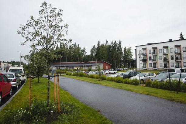 Tampereen kaupunki kohensi Risson uudehkon asuinalueen epäsiistiä puistoaluetta viime talvena istuttamalla puita Vasamamittarinkadun varteen. Nyt kiusaksi on tullut vieraslaji jättipalsami.