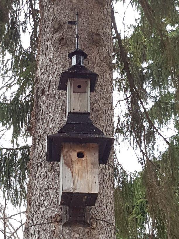 Haudankaivaja Marko Ruuskanen herää aamulla aikaisin ennen töitä rakentamaan mitä erilaisimpia linnunpönttöjä haudoille.