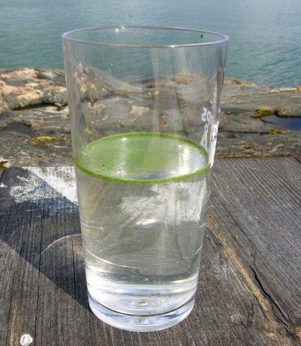 Testin voi tehdä myös lasissa. Jos pinnalle nousee hippusia, siinä on sinilevää.