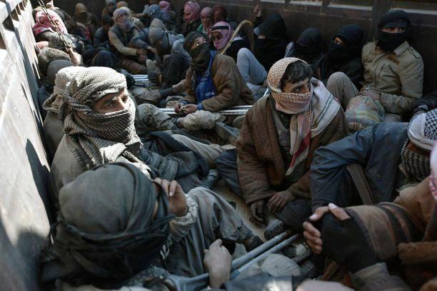 Kuorma-auto kuljettaa evakuoituja miehiä lähellä Baghouzin kaupunkia.