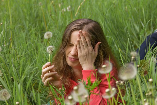 Hyttyset ovat välillä ikäviä ihmiselle, mutta hyttysilläkin on oma paikkansa luonnon kiertokulussa.
