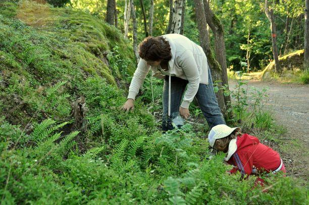 Ruotsalaiset lapset ajattelevat suomalaisia lapsia useammin, että heillä on mahdollisuuksia vaikuttaa ilmastonmuutoksen torjuntaan.