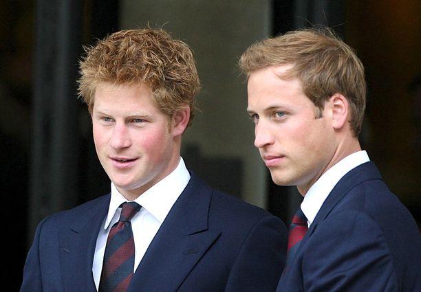 Isoveli William on yrittänyt tukea Harrya parhaansa mukaan.