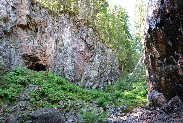 Luolan suuaukko näkyy rotkolaakson seinämästä. Laakso pohjalla kasvaa herkkää kasvillisuutta.