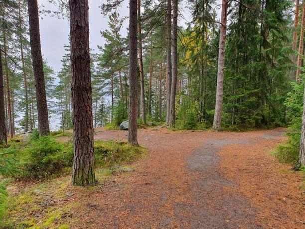 Kaupin metsä on suosittu liikunta-alue, jossa esimerkiksi tamperelaiset koululaiset oppivat hiihtämään ja suunnistamaan. Kuva oletetun rikospaikan liepeiltä.