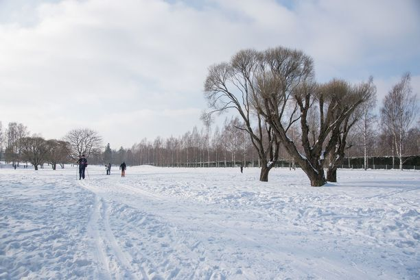 Lumisateet väistyvät perjantaina ja sää poutaantuu, kertoo Ilmatieteen laitos.