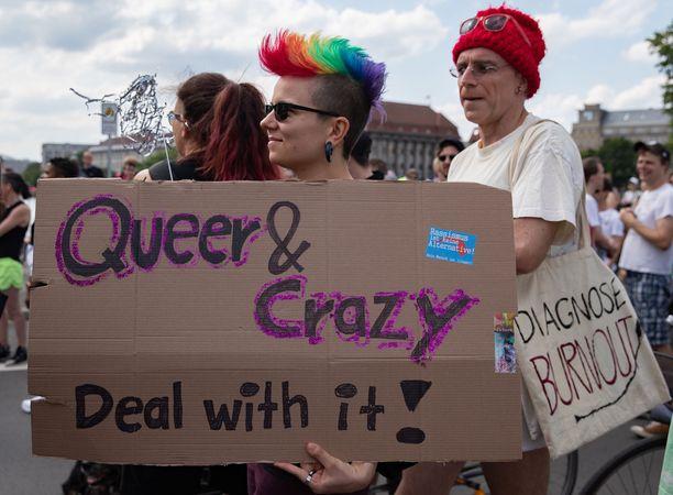 Saksassa Berliinissä järjestettiin kulkue, jossa nostettiin esille vammaisten ja mielenterveysongelmaisten sukupuolen ja seksuaalisuuden moninaisuutta. Kyltissä lukee 'Queer & Crazy – deal with it'. Queer-sana kuvaa sukupuolen ja seksuaalisuuden epätavallisuutta, ja kyltissä siis kehotetaan hyväksymään se, että ihmiset voivat olla yhtä aikaa 'queereja ja hulluja'.