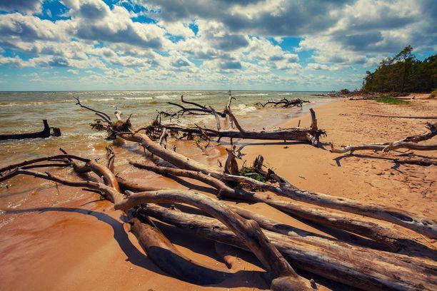 Kolkan niemimaalla Latviassa on näin upeita rantoja.