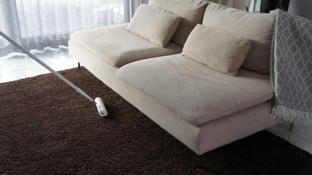 SINI-mattoteippiharjan avulla on helppoa puhdistaa koiran karvat sekä pienet roskat, hiukset ja pölyt matoilta ja huonekaluista ilman kumartelua.