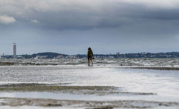 Suomi aloittaa Itämeren suojelukomitean puheenjohtajana. Kuvituskuva Itämereltä.