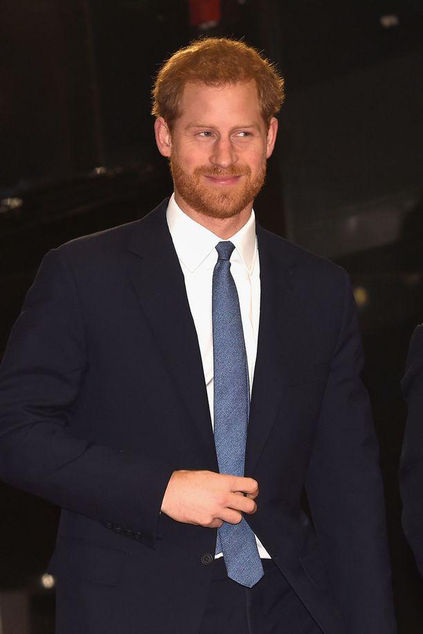 Harry hypistelee usein takkiaan.