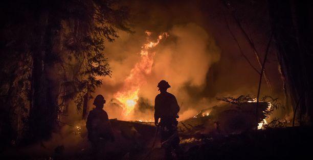Jo 40 ihmistä, iältään 14-100-vuotiaita, on saanut surmansa Kalifornian paloissa.