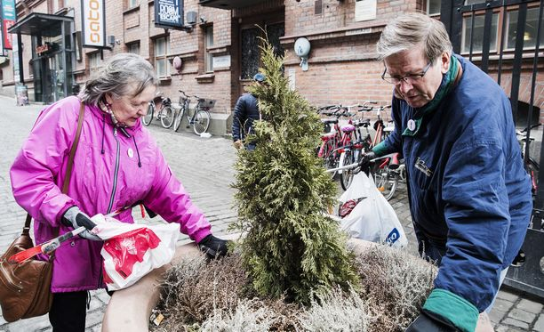 Kaija ja Ilkka Erkkilä ovat tehneet siivousiskuja useisiin kaupunkeihin.