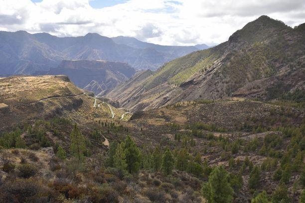 Tamadaban kansallispuisto tunnetaan vulkaanisista vuorista ja männyistä.