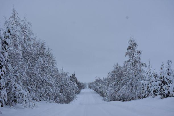 Uupunut hiihtäjä pelastettiin metsästä Nurmeksessa. Kuvituskuva.