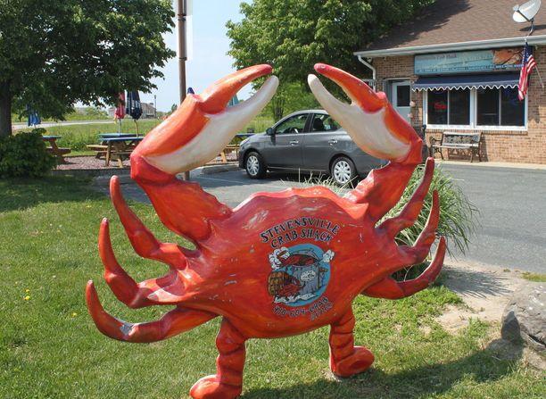 Chesapeake-lahden suosituimmat kesäravintolat tarjoavat höyrytettyjä sinitaskurapuja. Oman alueen ravuista on kova pula tänä keväänä.