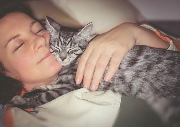 Kissan läsnäolo voi rauhoittaa.