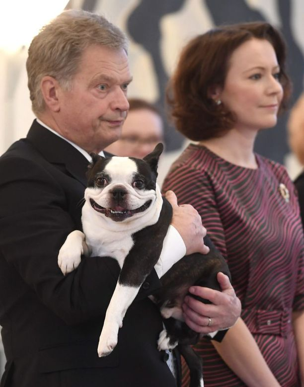 Lennu oli vuonna 2016 vastaanottamassa perinteisiä joulutervehdyksiä presidentin virka-asunnolla Mäntyniemessä. Koira oli silminnähden tyytyväinen juhlallisuuksiin.