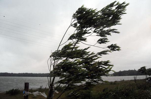 Pääasiassa kovan tuulen aiheuttamat vahingontorjuntatehtävät ovat koskeneet sähkölinjoille kaatuneita puita ja rakennusten päälle kaatumaisillaan olevia puunrunkoja. Kuvituskuva.