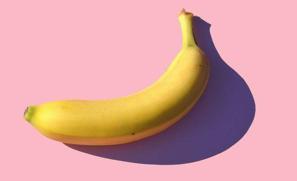 Täydellinen kakka on kuin banaani: sulavamuotoinen, pehmeä, mutta samalla sopivasti kiinteä ja molemmista päistään suippo.