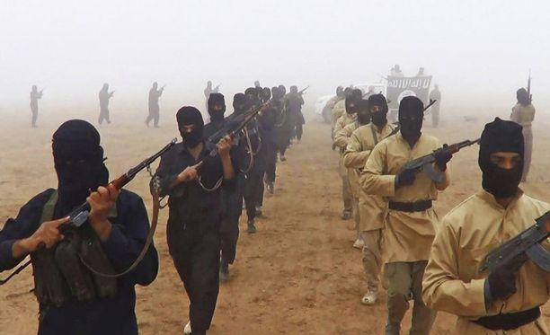 Asiantuntijan mukaan lännestä tuleva invaasio ja kymmenien tuhansien sotilaiden maajoukot kriisialueilla nostattaisivat vastustusta länttä kohtaan ja lisäisivät esimerkiksi al-Qaidan kaltaisten toimijoiden suosiota kriisialueella.
