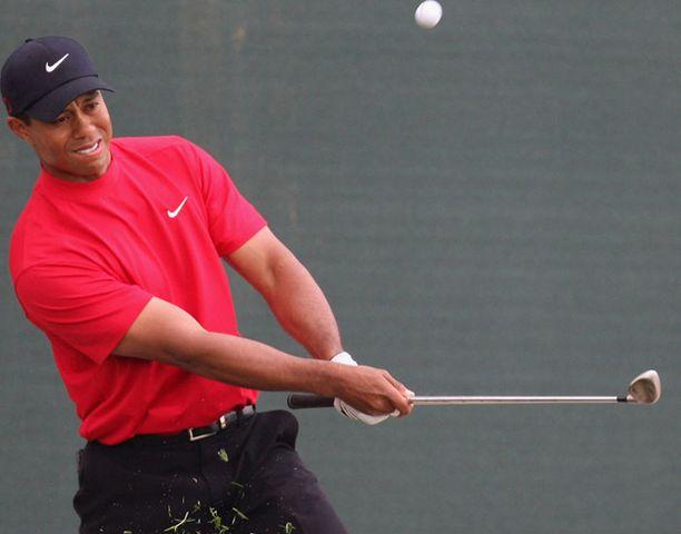Tiger Woods on tylsistynyt kuntoutusharjoitteista.