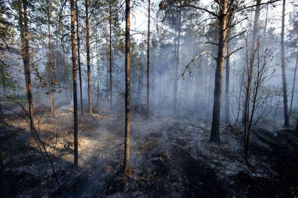 Pyhärannalla on palanut kymmeniä hehtaareja metsää.