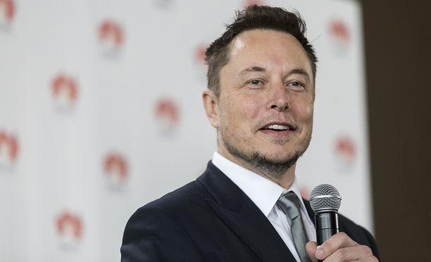 Elon Muskin mukaan keramiikkataiteilijan tulisi olla iloinen Teslan takia saamastaan huomiosta.