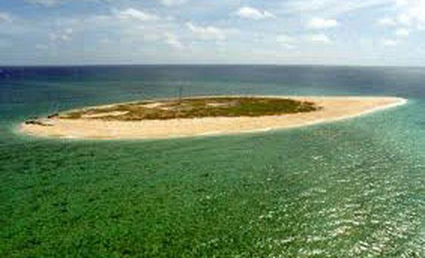Bramble Cay on noin neljän hehtaarin korallisaari, joka oli ainoa paikka, jossa riuttamosaiikkirottia eli. Merenpinnan kohoaminen ja myrskytulvat koituivat lajin kohtaloksi.