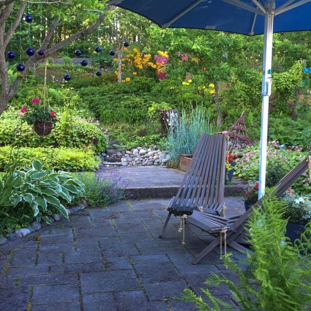 Seija Wilenin puutarhassa on vähän nurmikkoa ja paljon laatoituksia.