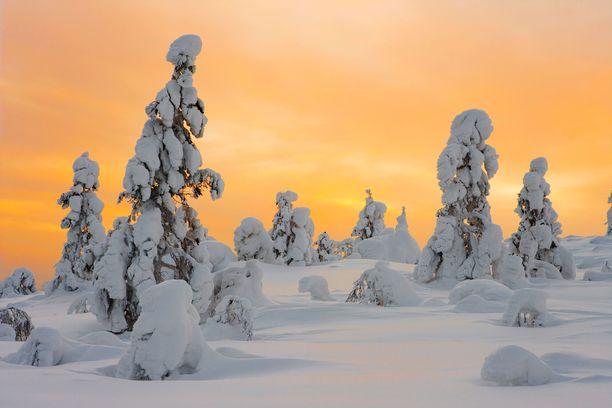 Ylläksen maisemat ihastuttavat talvellakin.