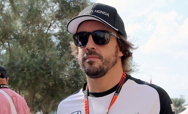 Fernando Alonso kehui tallin tekemää työtä.