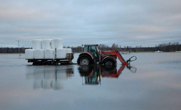 Ounas- ja Kemijoen kevättulvista ennustetaan keskimääräistä suurempia. Tulvahuiput ajoittuvat toukokuun puoliväliin tai loppuun. Kuva Pohjois-Pohjanmaan Siikajoen tulvista joulukuulta 2013.