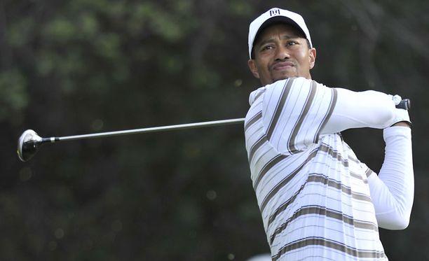 Tiger Woodsin huhutaan haluavan takaisin yhteen ex-vaimonsa kanssa.
