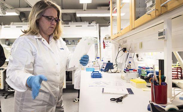 THL:n virusinfektiot-yksikön erikoisasiantuntija Niina Ikonen kertoo, että influenssaepidemian etenemistä on vaikea ennustaa.