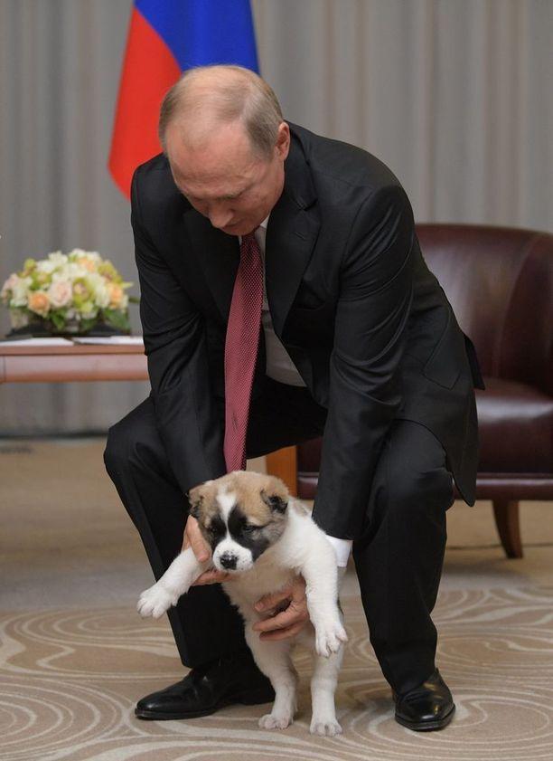 Putin on koirarakas.