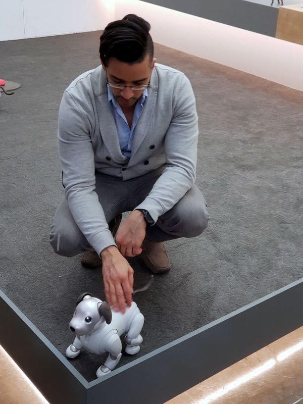 Aibo on tarkoitettu koko perheen robottikoiraksi, joka reagoi kosketukseen, ääneen ja osaa leikkiä sille tarkoitetuilla leluilla.